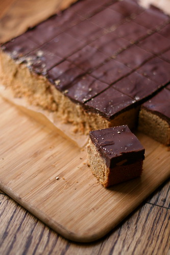 Chocolate-Covered Peanut Butter Bars
