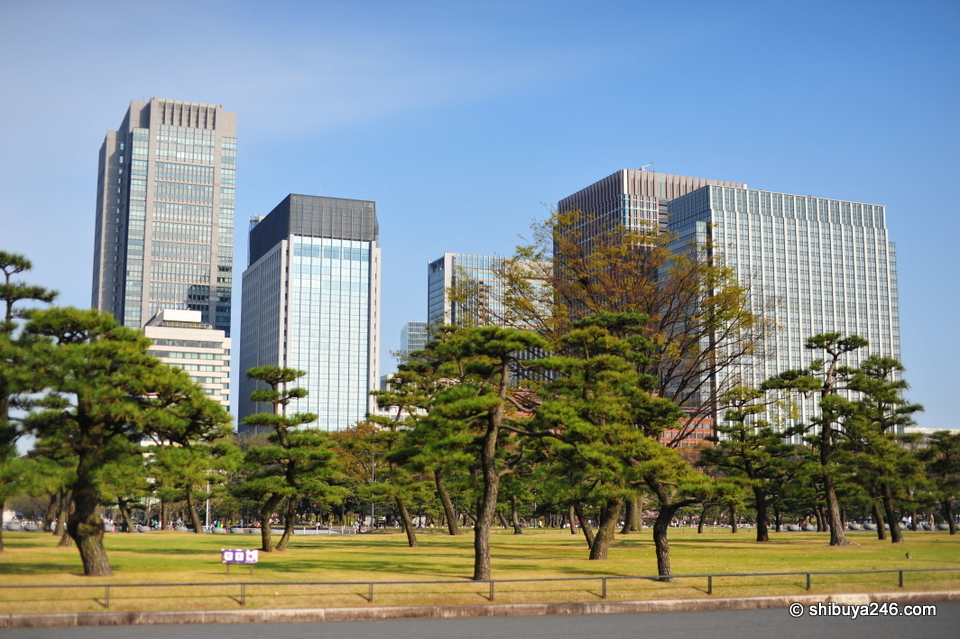 The buildings at Tokyo Station seen through the park.