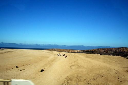 ATVers - near Cabo San Lucas
