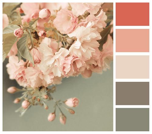 blossom romance
