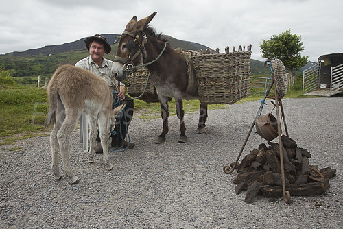 Traditional farmer - Connemara - Ireland _S4E7018