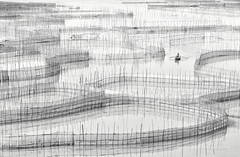 Fujian - I (Marsel van Oosten) Tags: marselvanoosten squiver phototours workshop landscape photography water reflection asia china fujian bamboo sticks monochrome blackandwhite boat fisherman award oneeyeland series tidalflats graphic