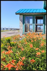 Time and Memories #HWW (Note-ables by Lynn) Tags: window oldbuildings fallingapart confederationbridge princeedwardisland hww windowwednesday