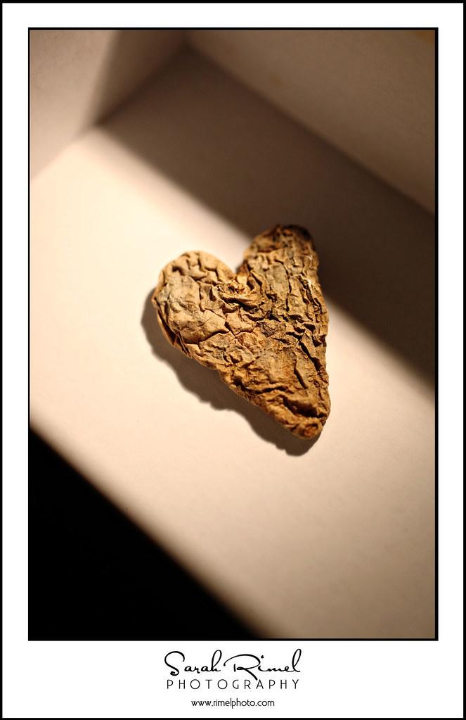 love spud 03