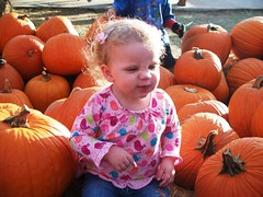 "She's actually trying to ""smell"" the pumpkins. (Ludeman99) Tags: eowynlouisebitner pumpkinpicking2009"