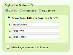 Pagination Options