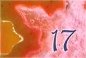 15_dia_17