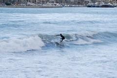 Surf Soller