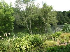 Indian Char Bagh Garden 8