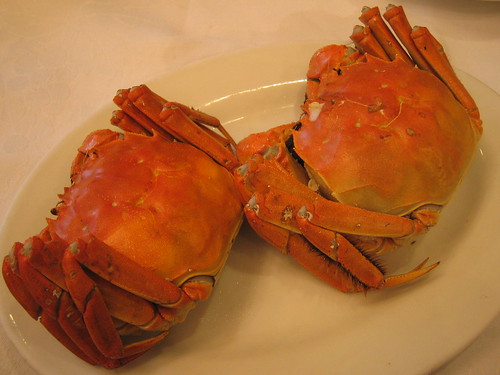 Shanghai hairy crab(上海蟹)