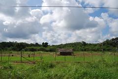 DSC_0190 (drs.sarajevo) Tags: trincomalee morawewa kithellutu returnsinghalese