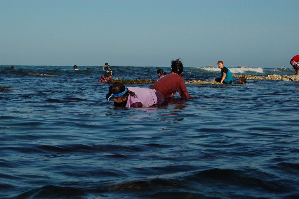 Abalone Season 2009