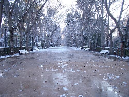 Parque - Albacete 07/01/2010