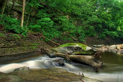 tinkers creek (Dpedraza1) Tags: longexposure travel ohio tourism nature creek nikon greatfalls fallentree berea d60 cs4 movingwater tinkerscreek nikond60 viaductpark naturehdr bereaohio photomatixhdr nikonhdr ohiotravel