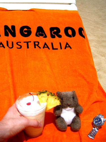 Beach wombat