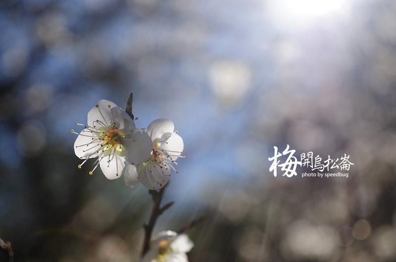 梅開烏松崙  (25).jpg