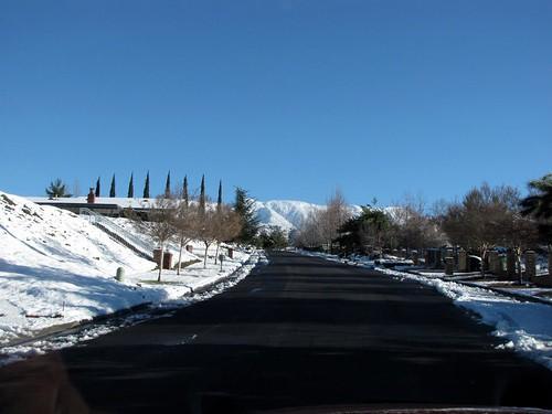 January Snow-2