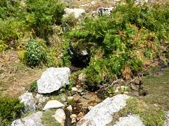 Sur la crête de Prunu : la 1ère source des Tre Funtane