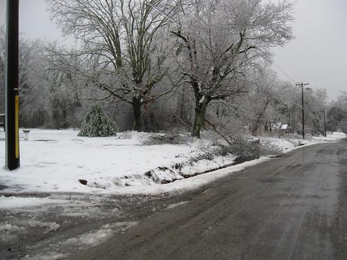 Neighbors across the street broken tree