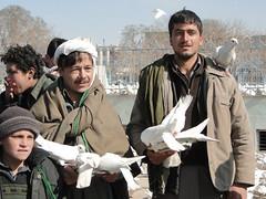 DSC08923 (huxley1312) Tags: afghanistan sharif mazare