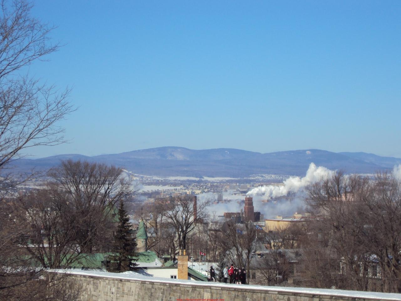 2010-02-13_015