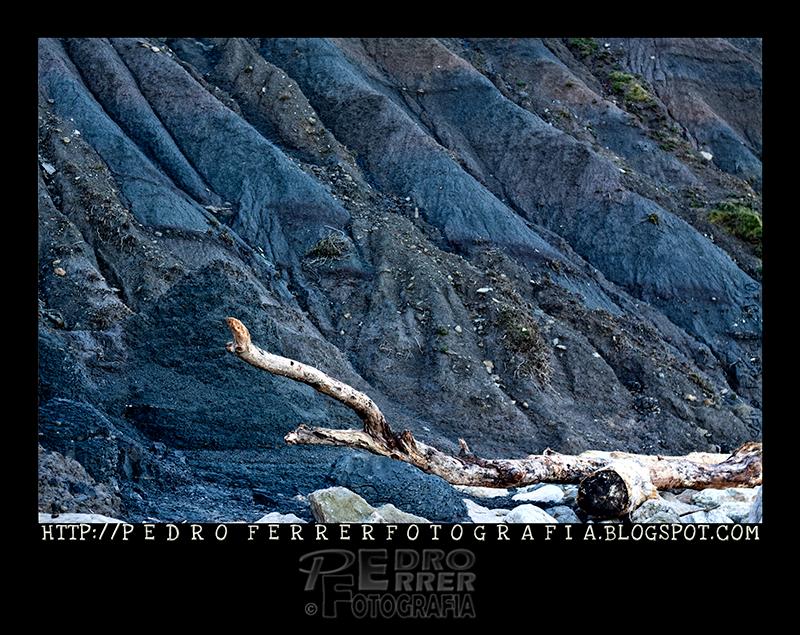 Cuchia - Los Caballos - Texturas marinas