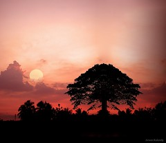 Sunset Calicut (aroon_kalandy) Tags: light sunset sky orange sun india seascape beach nature beautiful beauty silhouette composite photoshop landscape creativity photography lights evening landscapes boat twilight photographer adobephotoshop ar artistic sony awesome kerala fantasy greatshot impressions concept lovely lightpainter apus naturelovers calicut kozhikode sihloutte supershot topshots beautifulshot anawesomeshot photoscape malayalikkoottam worldwidelandscapes natureselegantshots sonyh50 micartttt thebestofmimamorsgroups aroonkalandy theoriginalgoldseal flickrsportal