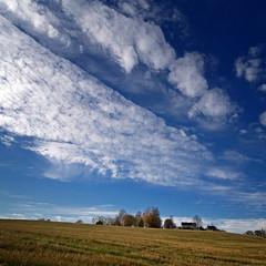 Høst i ravinen #2 (Krogen) Tags: autumn oktober norway landscape norge october norwegen noruega scandinavia akershus høst romerike krogen landskap noorwegen noreg skandinavia nannestad olympuse400 romerikelandskapsvernormråde