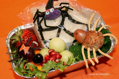 Halloween Week Bento #5 - Spider Species