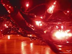 Twinkle Light Details (Orignaux Moose) Tags: lights apartment twinkle decor