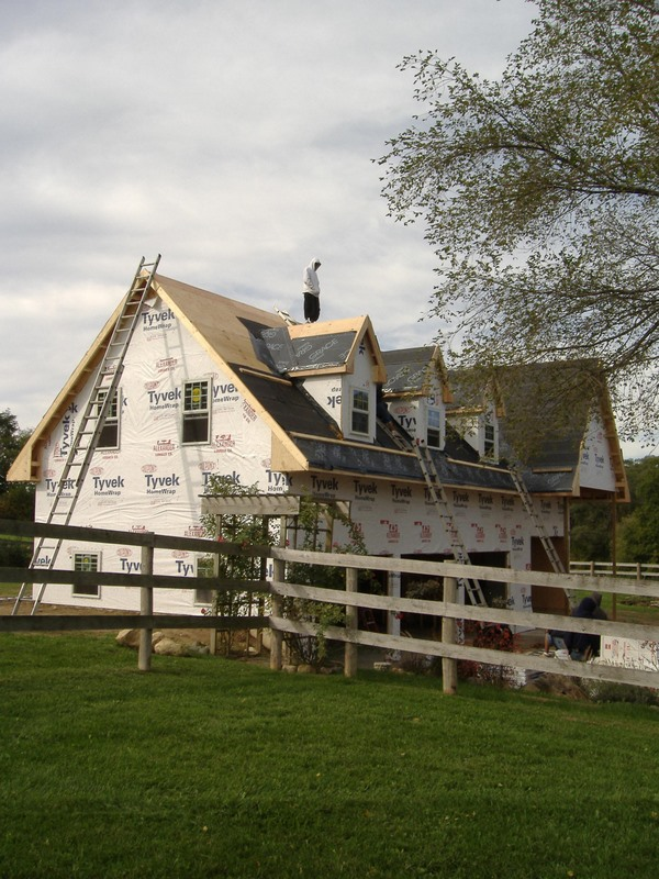 Litte Barn Roof 014