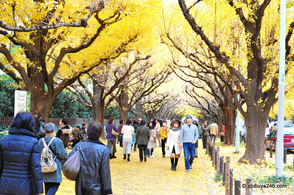 Despite being a little bit cold, everyone was enjoying themselves under the yellow canopy.