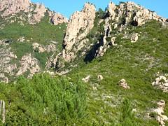 Perte du sentier en vue de la pointe 761 m (le sentier est censé passer à sa gauche)