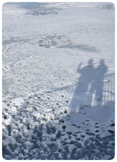 New-Year's-Ice-Shadows