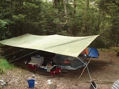 The Whaleoil pod campsite