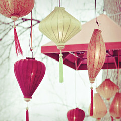 lanterns (shannonblue) Tags: light red orange yellow zoo lanterns denverzoo tassels chineselanterns paperlanterns japaneselanterns fpoe silklanterns