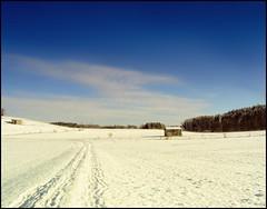 Allgaeu 2010 Januar Schnee 4
