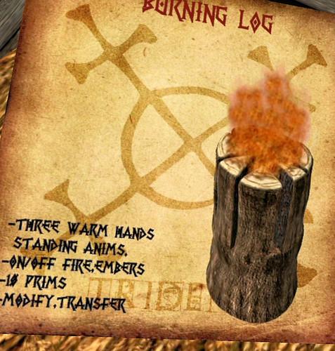 25L Tuesday Trident burning log