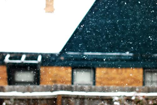Snowy houses.