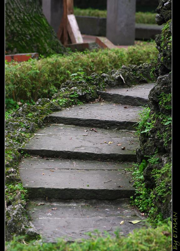 林家 板橋別墅 花園 寫生練習