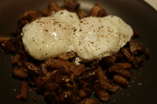 Successful poached eggs