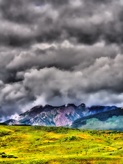 Storm Clouds over Alpine Grasses (jackaloha2) Tags: trees mountains clouds photoshop canon purple meadow grasses yellows obscured hdr stormclouds crestedbutte pyramidpeak highalpine averypeak canoneosdigitalrebelxsi maroonbellswildernessarea jackaloha2