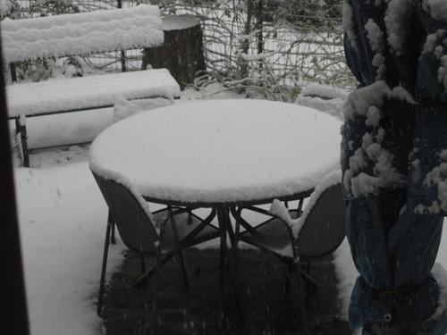 Snow! 002