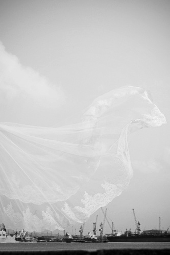 The veil that looks like a horse