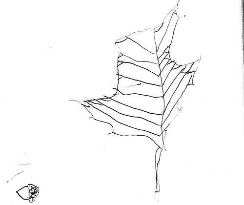 Oak Leaf & Acorn (by JD Boy age 6)