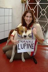 charity dog peru animalrescue iquitos internation lupine ngo adoption nonprofit veterinary amazonia geraldo streetdog amazoncares wvs09w geraldpool