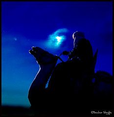 Night Dreams ! (Bashar Shglila) Tags: world sahara beautiful festival photography interesting gallery dress desert photos shots top sony culture best explore most camel worlds popular libya camels dsc touareg tuareg libyan ghadames libia traditonal libyen explored lbia libi libiya sahran liviya libija theunforgettablepictures  hx1  dschx1  thepowerofnow   lbija  lby libja lbya liiba livi