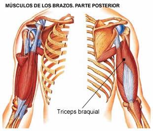 Los dolores de la parte inferior de la espalda a la derecha