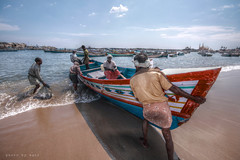 Life in Kerala : Fishing (AgniMax) Tags: life travel november sea fish tourism beach boat fishing fisherman market harbour photojournalism kerala tourist fishmarket vacations hdr fishmonger journalism trivandrum traveldestinations sellfish tvm thiruvananthapuram tonemapped tonemapping vizhinjam placeofinterest qtpfsgui kadappuram lifeinkerala drisyam2010exhibit