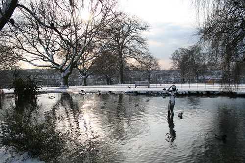 The pond in winter dress